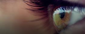 Human Eye and Colourful World