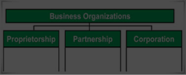 Forms of Business Organisation
