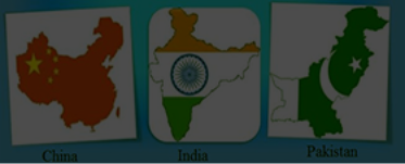 Unit IV- Comparative Development Experiences of India and its Neighbours
