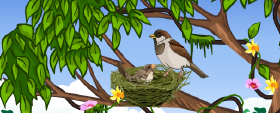चिड़िया और चुरुंगुन