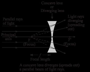Chapter 5 From Textbook Lakhmir Singh Manjit Kaur Physics For