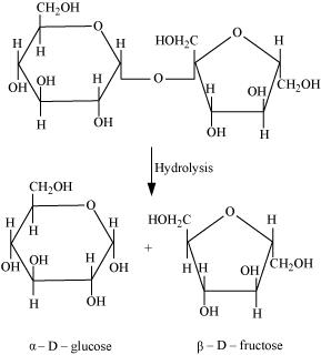 hydrolysis of sucrose Name(s) project number project title abstract summary statement help received tavit marokosian polarimetry and hydrolysis of sucrose j0599 objectives/goals my project is to measure and compare the rate of hydrolysis of sucrose catalyzed by hydrochloric acid (hcl) and invertase enzyme using a polarimetric technique.
