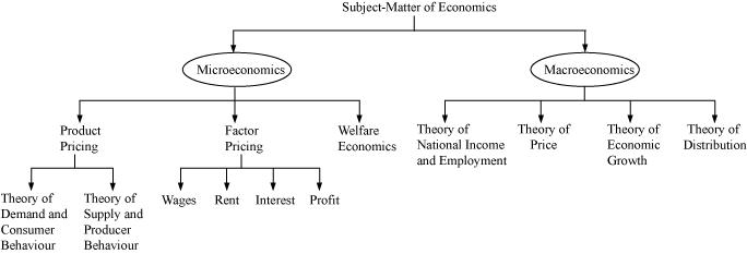 What is economics? - American Economic Association
