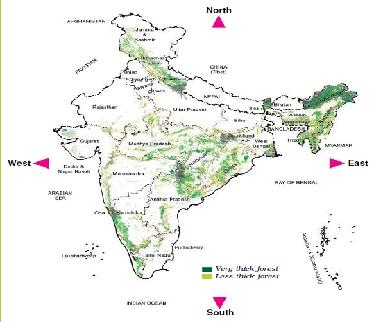 Free NCERT Solutions for Class 5 Evs Chapter 20 - Whose Forests